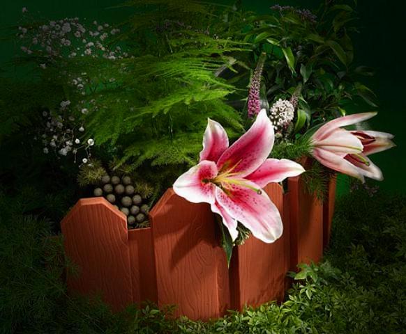 Черепашка на цветах фото 5